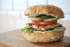 汉堡鸡快餐热鲜美 免版税库存图片