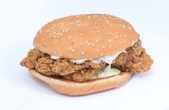汉堡鸡快餐热鲜美 库存照片