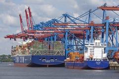 汉堡-在Burchardkai的集装箱船 图库摄影