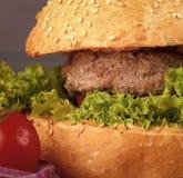汉堡 鲜美开胃新鲜的汉堡 库存图片
