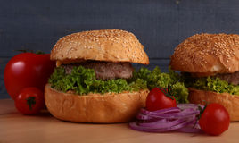 汉堡 免版税库存图片