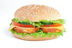 汉堡chiken 库存图片