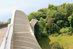 汉德尔逊挥动在登上法伯雨林的桥梁 库存照片