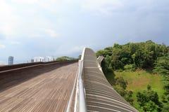 汉德尔逊挥动在登上法伯雨林的桥梁 库存图片
