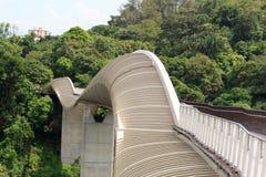 汉德尔逊挥动在登上法伯雨林的桥梁 免版税库存照片