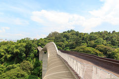 汉德尔逊挥动在登上法伯雨林的桥梁 图库摄影