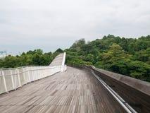 汉德尔逊挥动桥梁新加坡步行桥 免版税库存图片