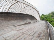 汉德尔逊挥动桥梁新加坡步行桥 库存照片