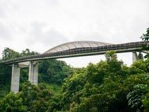 汉德尔逊挥动桥梁新加坡步行桥 库存图片