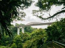 汉德尔逊挥动桥梁新加坡步行桥 免版税图库摄影