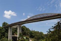 汉德尔逊挥动桥梁新加坡 免版税库存照片
