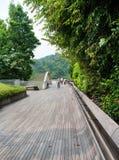 汉德尔逊波浪是最高的步行桥在新加坡。 库存图片