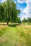汉普顿法院公园在南伦敦,英国 免版税库存照片