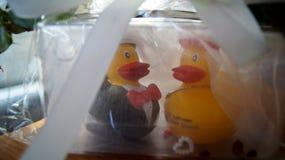 汉莎航空公司头等卖票und Quitscheentchen著名鸭子 免版税库存图片