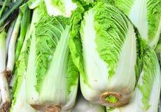汉语的圆白菜 免版税图库摄影
