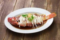 汉语被蒸的红色石斑鱼 免版税图库摄影