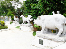 汉语Zodiak 库存图片