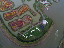 江苏盐城:30百万郁金香航拍在荷兰陶醉 免版税库存图片