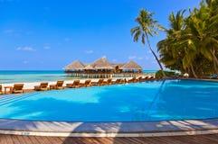 水池和咖啡馆在马尔代夫海滩 库存图片