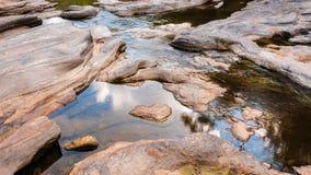 水池在国家公园 库存图片