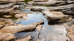 水池在国家公园 免版税库存图片