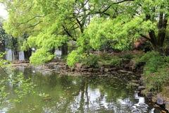 水池在湖南大学校园里  库存图片