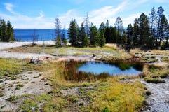 水池地热喷泉热湖岸反弹通入蒸汽的略图西方黄石 免版税图库摄影