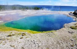 水池地热喷泉热湖岸反弹通入蒸汽的略图西方黄石 免版税库存照片