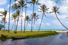 池塘、小船和海在棕榈树中 免版税库存图片