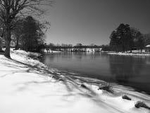 池塘冬天 免版税库存图片
