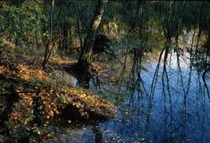 池塘反射-新罕布什尔 图库摄影