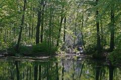 池塘反映水 免版税库存图片