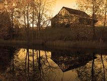池塘反映 图库摄影