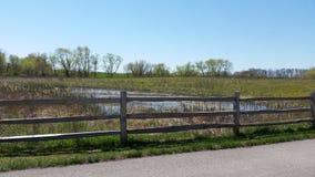 池塘和篱芭 库存照片
