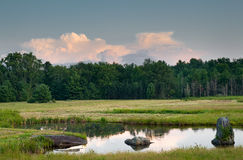 池塘和草甸哈德森谷的, NY 库存图片