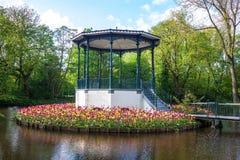 池塘和郁金香在Vondelpark 免版税库存图片
