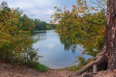 池塘在一个五颜六色的秋天公园 图库摄影