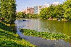 池塘在一个城市公园在莫斯科 免版税库存照片