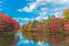 池塘在令人愉快的秋天 图库摄影