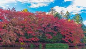 池塘在令人愉快的秋天 库存照片