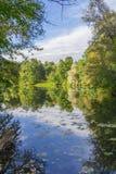 池塘在公园 免版税库存照片