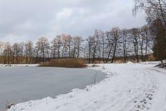 池塘在冬天 库存图片