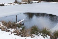 池塘在冬天 免版税库存图片