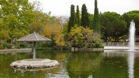池塘在城市 免版税库存图片
