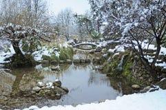 池塘在多雪的公园 免版税库存图片