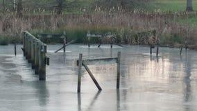 冻池塘在春天 免版税库存照片