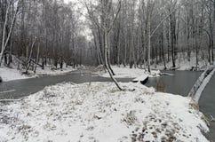 池塘在森林公园在11月下旬 库存照片
