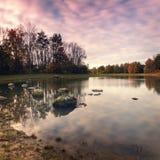 池塘在森林公园 免版税图库摄影