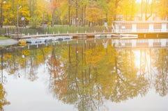 池塘在秋天城市公园 免版税库存照片