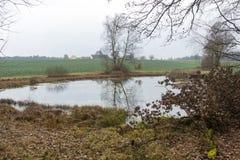 池塘在秋天 免版税库存图片